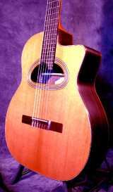 Этно Гитары типа Selmer