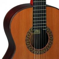 Классическая гитара PEREZ 670 Cedar