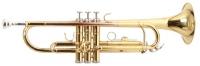 Труба ROY BENSON TR-101 Bb (цвет золото)