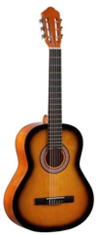 Акустическая гитара COLOMBO LC 3900 BS